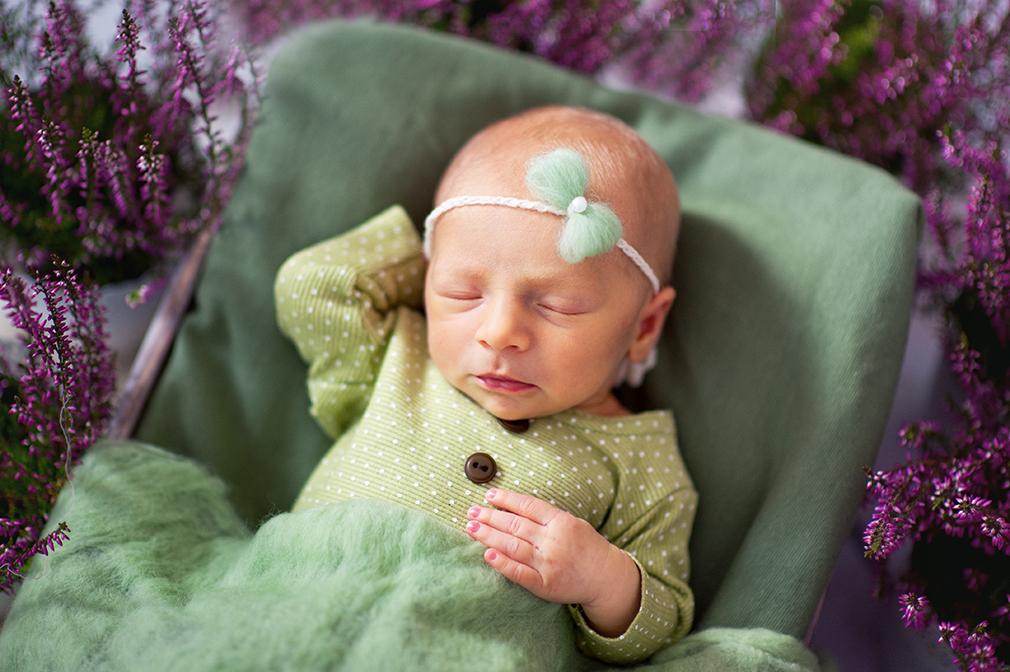 sesja noworodkowa we wrzosach, dziewczynka noworodek na sesji