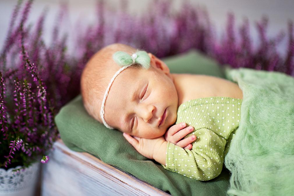 śpiące dziecko we wrzosach, jesienna sesja noworodkowa