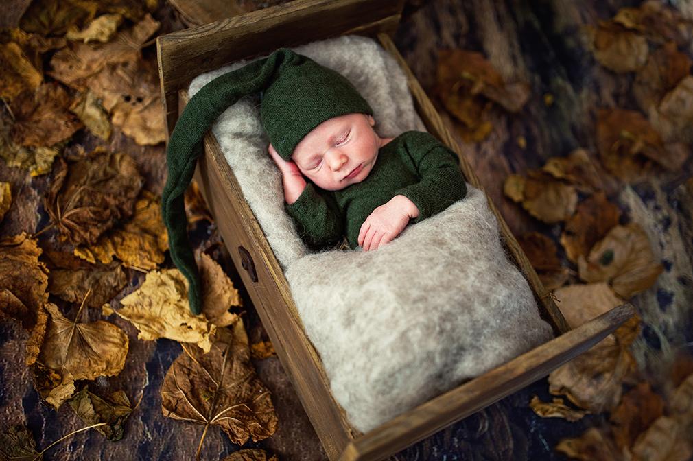 sesje noworodkowe w leśnej scenografii