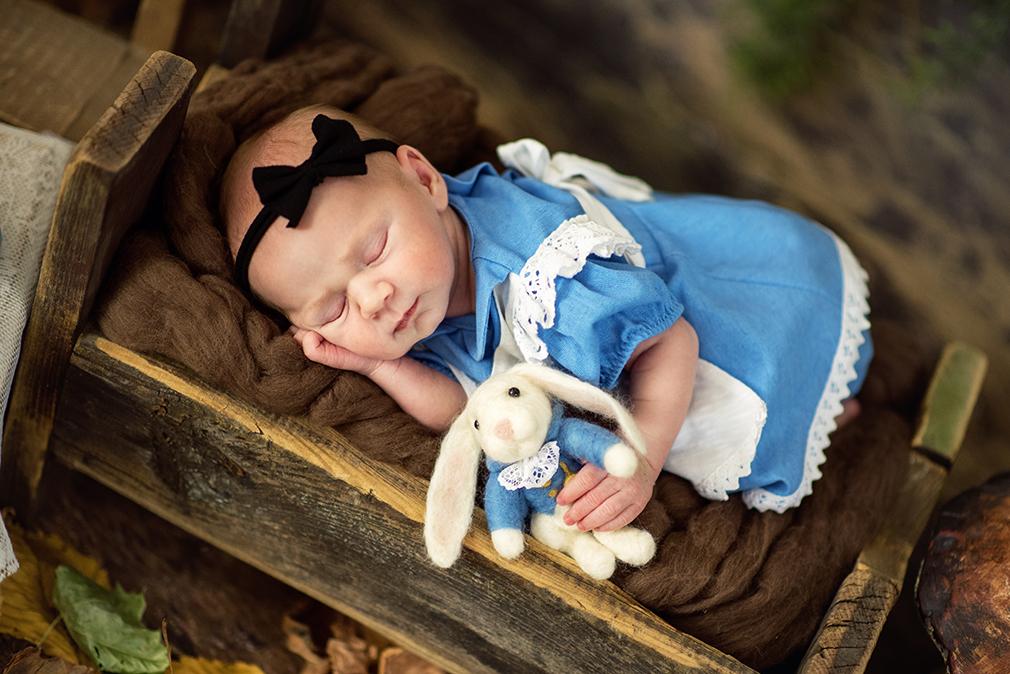 alicja, królik z alicji w krainie czarów, sesja noworodkowa