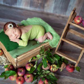 fotografia noworodkowa, zdjęcia noworodków, zdjęcia noworodkowe, kiedy na sesję z noworodkiem