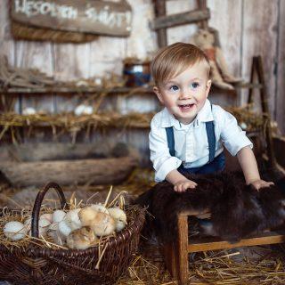 sesja wielkanocna, sesja wiosenna, studio dziecięce, fotograf konin