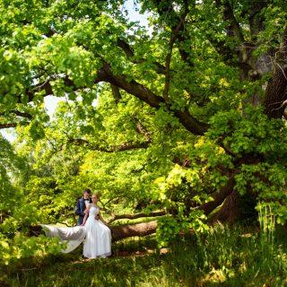 plener ślubny w naturze, fotograf konin